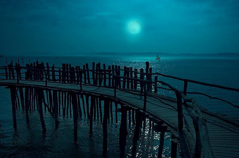 Blue Moon by Artist alan