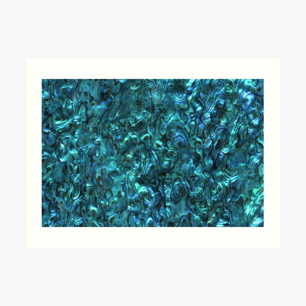 Abalone Shell   Paua Shell   Seashell Patterns   Sea Shells   Cyan Blue Tint    Art Print