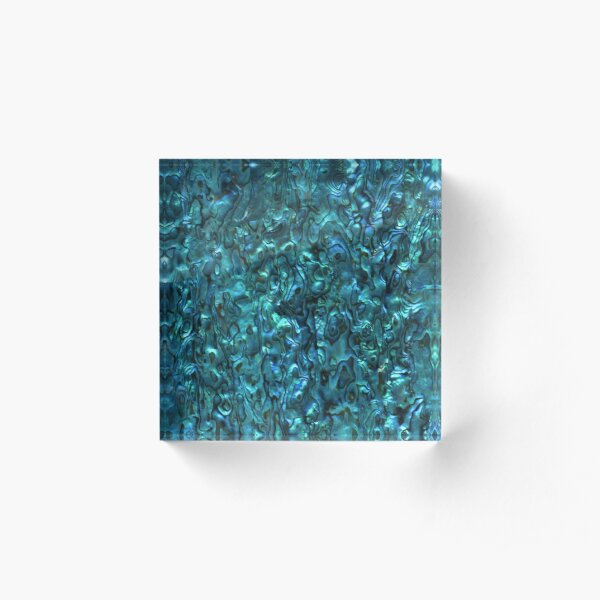 Abalone Shell | Paua Shell | Seashell Patterns | Sea Shells | Cyan Blue Tint |  Acrylic Block