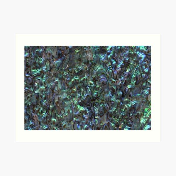 Abalone Shell | Paua Shell | Seashell Patterns | Sea Shells | Natural |  Art Print