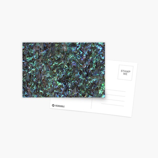 Abalone Shell | Paua Shell | Seashell Patterns | Sea Shells | Natural |  Postcard