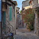 The Back Alleys of Viviers by Lanis Rossi