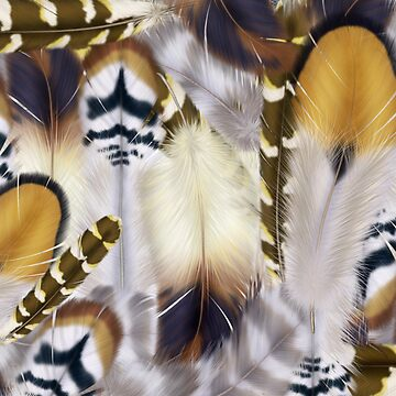 Feathers by AbequeWikimac