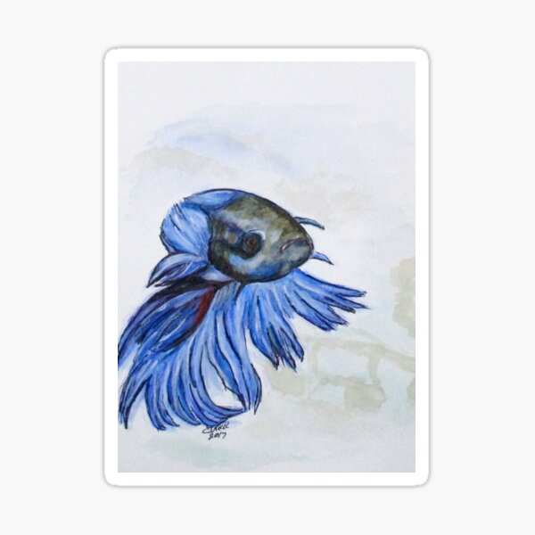 Ben Blue Betta Fish Sticker
