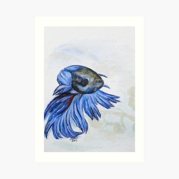 Ben Blue Betta Fish Art Print