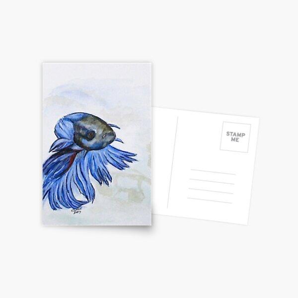 Ben Blue Betta Fish Postcard