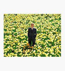 Big Fish- Daffodils Photographic Print