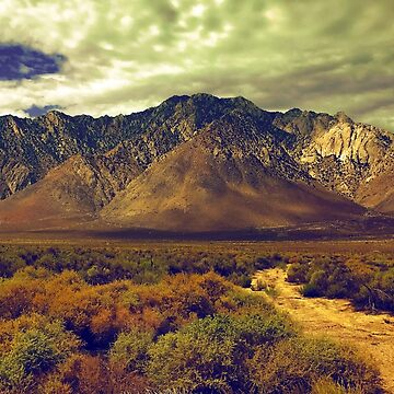 California Postcards Lone Pine by collective70