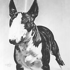 Bull Terrier  by threebrownhares