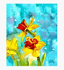 Daffodils in spring - painting in alcohol inks Photographic Print