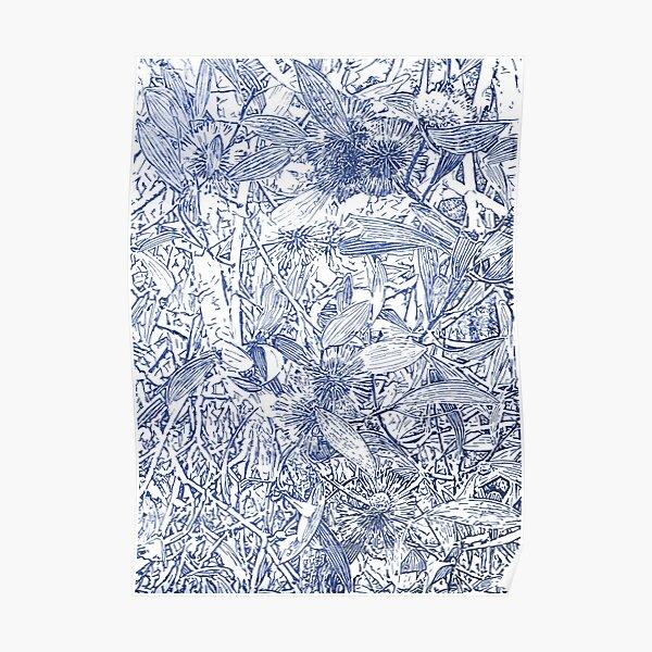Hakea, Blue Poster