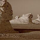 Sphinx in the Desert by Nigel Fletcher-Jones