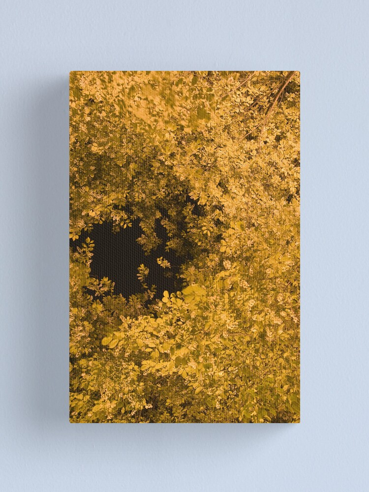 Alternate view of Golden Canopy Canvas Print