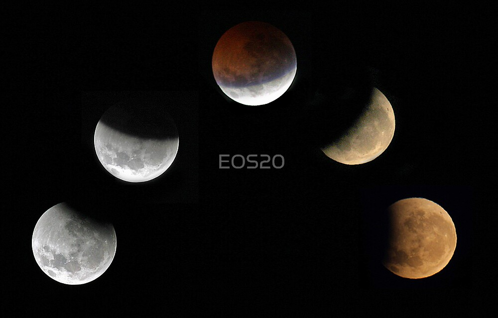 Partial Lunar Eclipse - August 17 2008  by EOS20