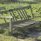 The broken bench by MagsArt