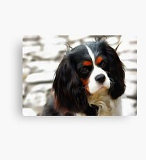 Portrait Of A King Charles Cavalier Spaniel Canvas Print