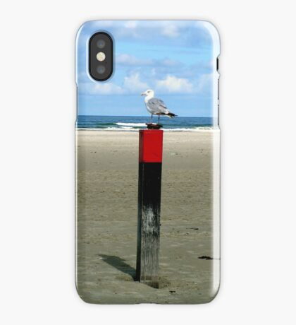 Rusty lock case guarded by a Seagull  iPhone Case/Skin