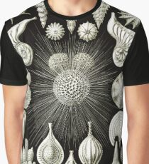 Art Forms in Nature - Amazing HD vintage design number 92 Graphic T-Shirt