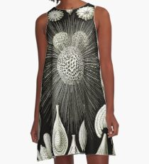 Art Forms in Nature - Amazing HD vintage design number 92 A-Line Dress