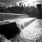 The River by Maximilian John