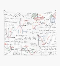 Mathematics Formulas Numbers  Wall Tapestry