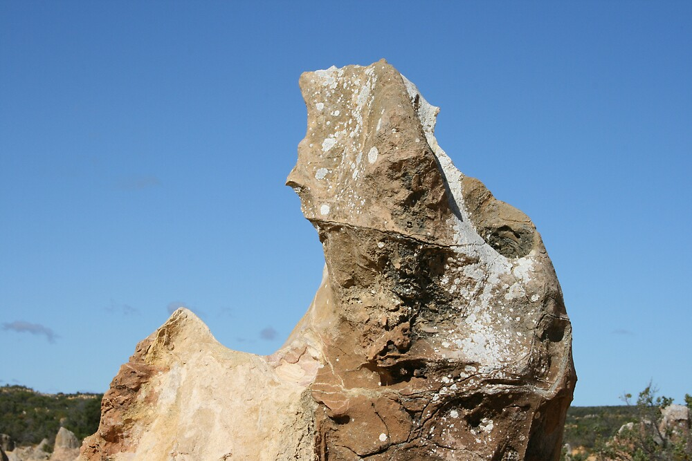 Seahorse of the Pinnacles by mylestyle