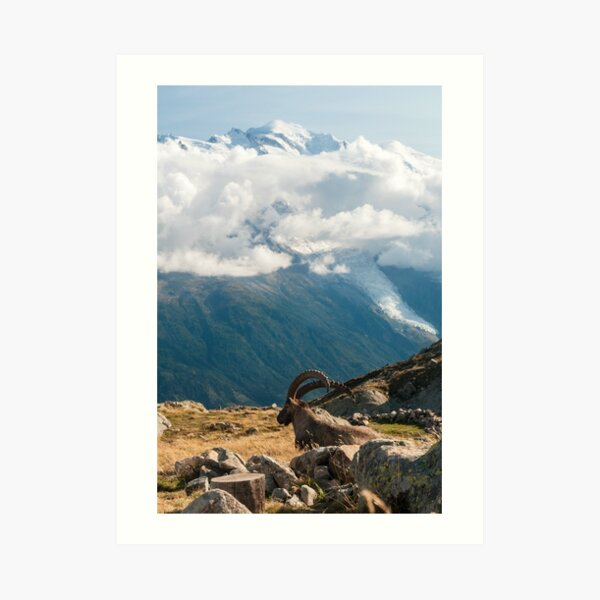 Taking in the landscapes Art Print
