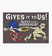 Nasty Hedgehog!!! Photographic Print