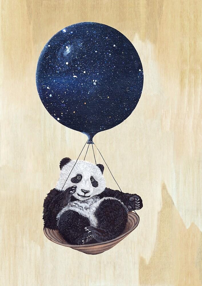 Panda by Ruta Dumalakaite