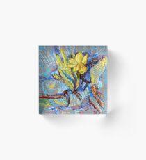 Daffodil in my rock garden I Acrylic Block