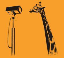 cctv vs giraffe
