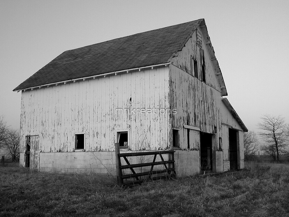 Old Barn at Sunset by mnkreations