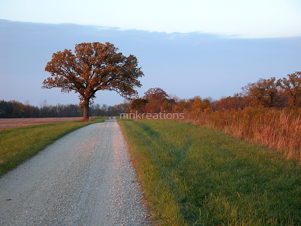 Lone Tree by mnkreations