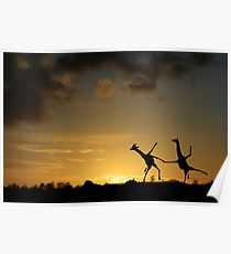 Happy Dancing Giraffes Poster