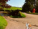The Ford at Badgworthy Water, Malmsmead, Devon by trish725