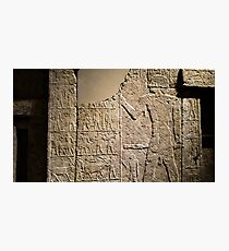 Egyptian collection - Neues museum  Photographic Print