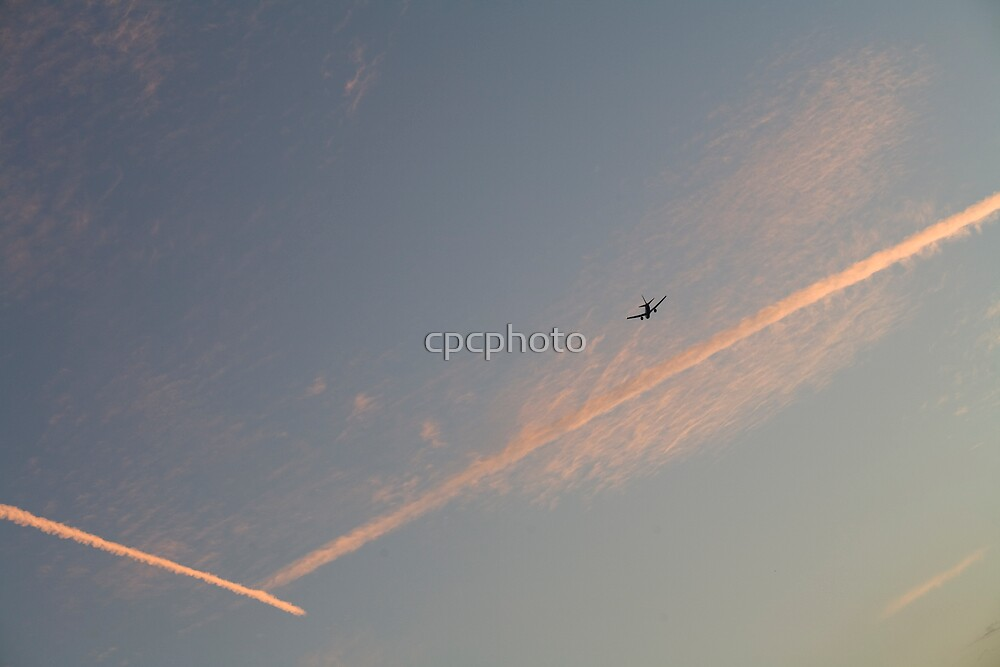 Flying off by cpcphoto