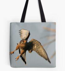 Common Kestrel Tote Bag