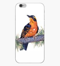 Birds In Hell iPhone Case