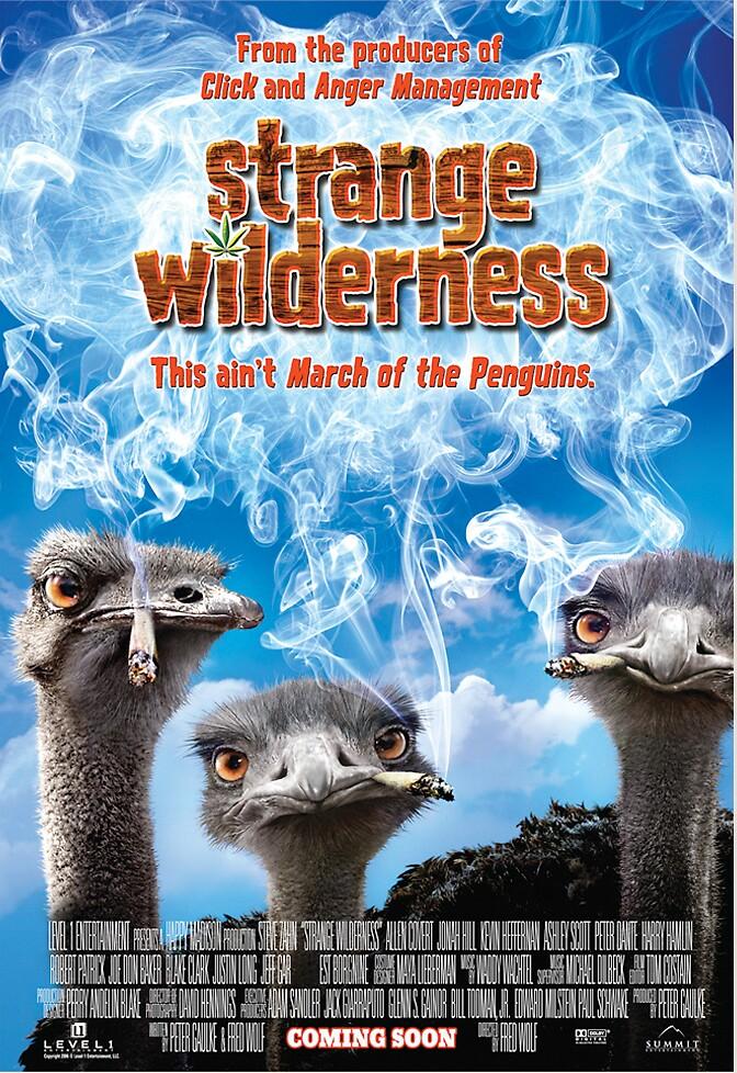 Strange Wilderness International Theatrical Poster by rockgoods