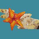 Starfish by pokegirl93