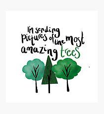 Dear Evan Hansen Amazing Trees Photographic Print