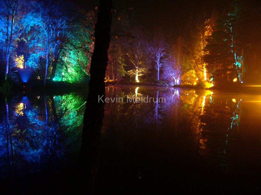 The enchanted forrest-3 by Kevin Meldrum