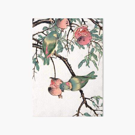 Pomegranate and Lovebirds Art Board Print