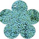 Green Broccoli Florets by Bean8bird