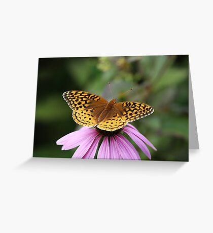 Butterfly Contemplation Greeting Card