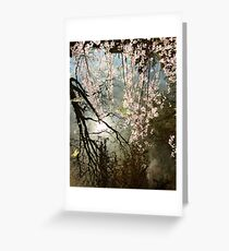 Tree Reflection Over Water Greeting Card