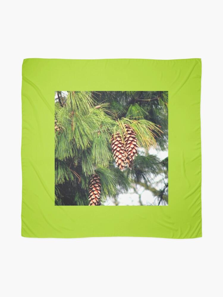 Alternative Ansicht von On The Threshold of Winter - Sunlit Pine Cones  Tuch