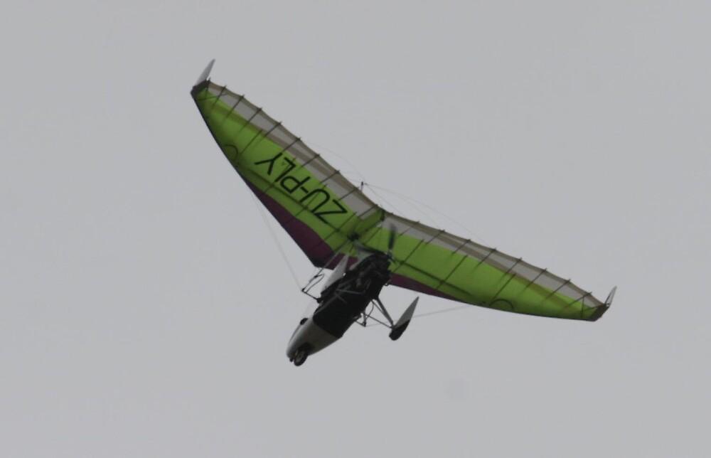 Overhead - Trike #1 by Paul Lindenberg