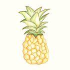Summer Pineapple by MichalisStudio